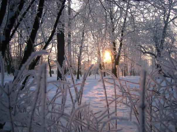 hiver-en-pologne