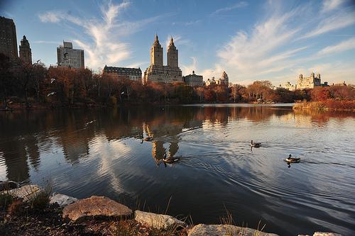 nature de new york