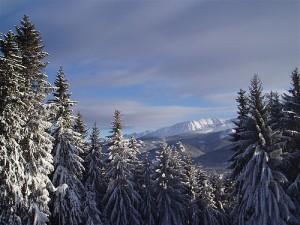 ski-zakopane