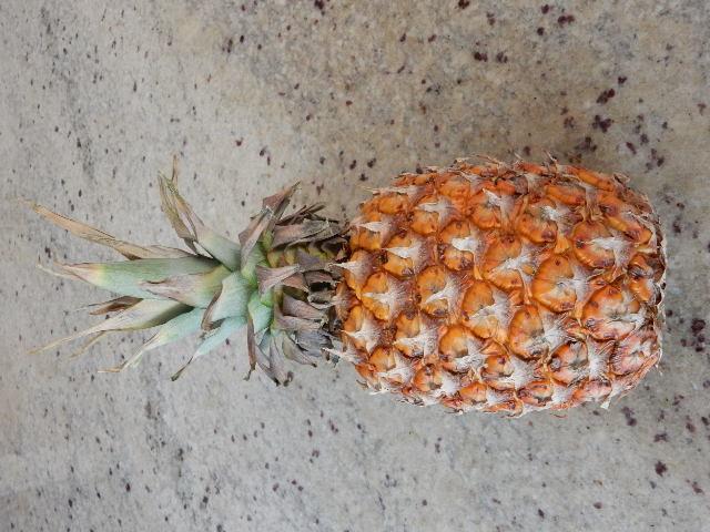 Un ananas à 6$... Aïe !